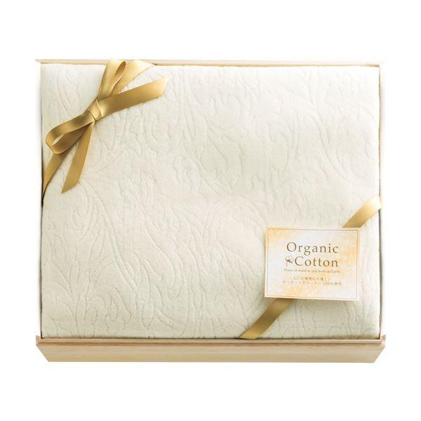 オーガニックコットン綿毛布(国産木箱入) B51720371