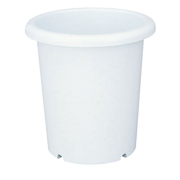 (まとめ) ベーシック 深型 植木鉢/ポット 【長鉢 8号 ホワイト】 穴付き シンプル ガーデニング用品 園芸 【×40個セット】