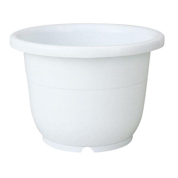 (まとめ) ベーシック 植木鉢/ポット 【輪鉢 7号 ホワイト】 穴付き シンプル ガーデニング用品 園芸 【×60個セット】