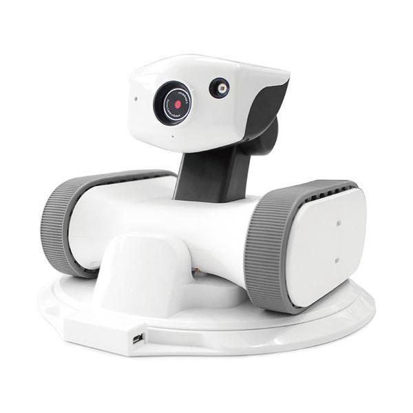 (まとめ) アボットライリー用交換シリコンベルトグレー 1個 【×30セット】