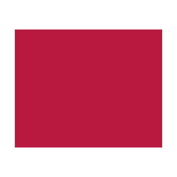 (まとめ) ササガワ 包装紙 レッドアップル 半才判49-1113 1パック(50枚) 【×10セット】