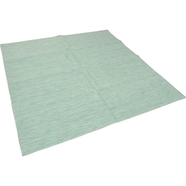 カーペット ラグ 平織 抗菌 ペットの爪が引っかかりにくい レベルカット / 江戸間 6畳 261×352cm グリーン 日本製 ソレイユ 九装
