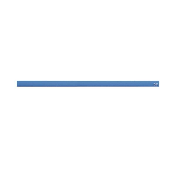 (まとめ) ライオン事務器 マグネットバー長さ320×幅15×厚さ8.5mm ブルー No.300P 1本 【×30セット】