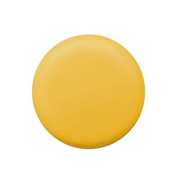 (まとめ) PLUS カラーマグネット 直径20mmイエロー CP-020M 1パック(6個) 【×50セット】