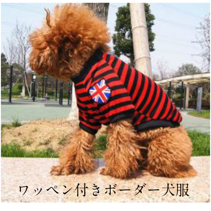 期間限定 ワッペン付きボーダー犬服 ペット服 ペット用品 年末年始大決算 愛犬用 カワイイ かわいい