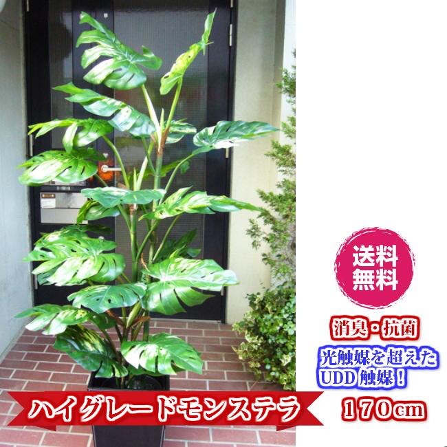 観葉植物 大型 人工観葉植物 消臭・抗菌 UDD触媒 モンステラ 170cm 送料無料 フェイクグリーン