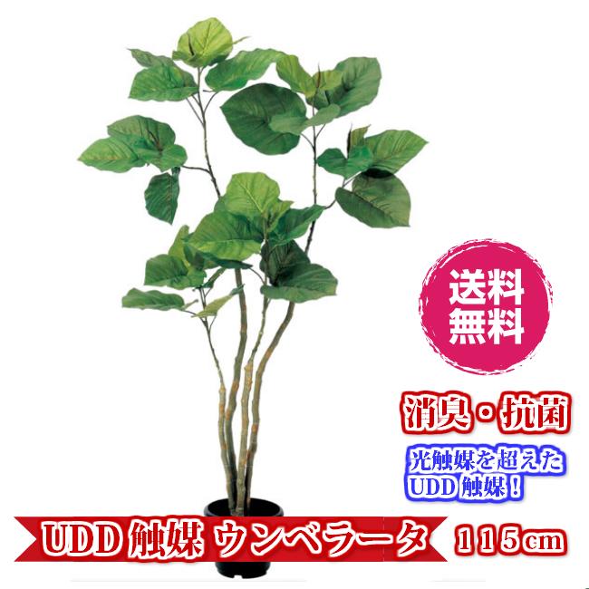 キャッシュレス5%還元対象 観葉植物 インテリア 人工観葉植物 消臭・抗菌 UDD触媒 ウンベラータ 115cm 送料無料 フェイクグリーン