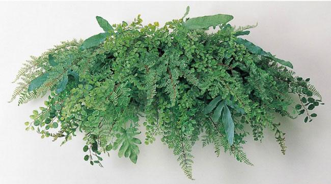 観葉植物 造花 人工観葉植物 消臭・抗菌 UDD触媒 ミックスリーフスワッグ 壁掛け 壁面緑化 フェイクグリーン