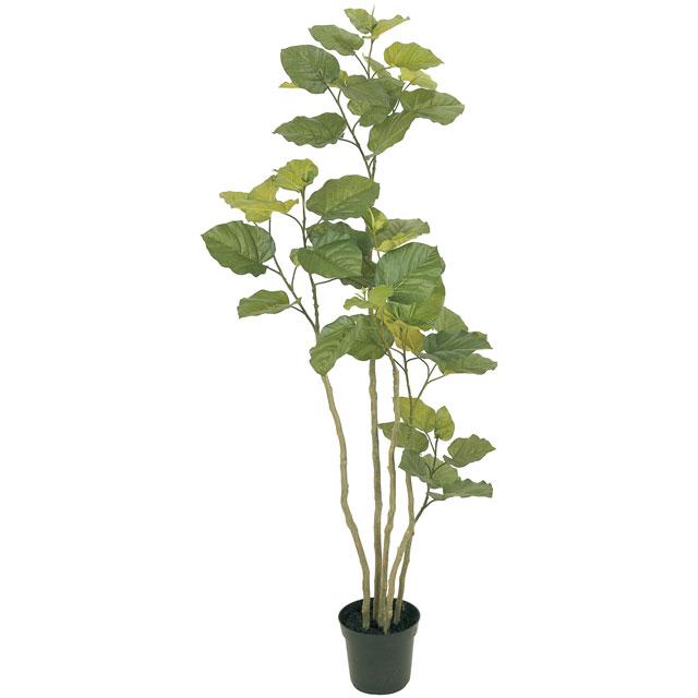 観葉植物 造花 リビング 人工観葉植物 消臭・抗菌 UDD触媒 ウンベラータ 165cm 送料無料 フェイクグリーン