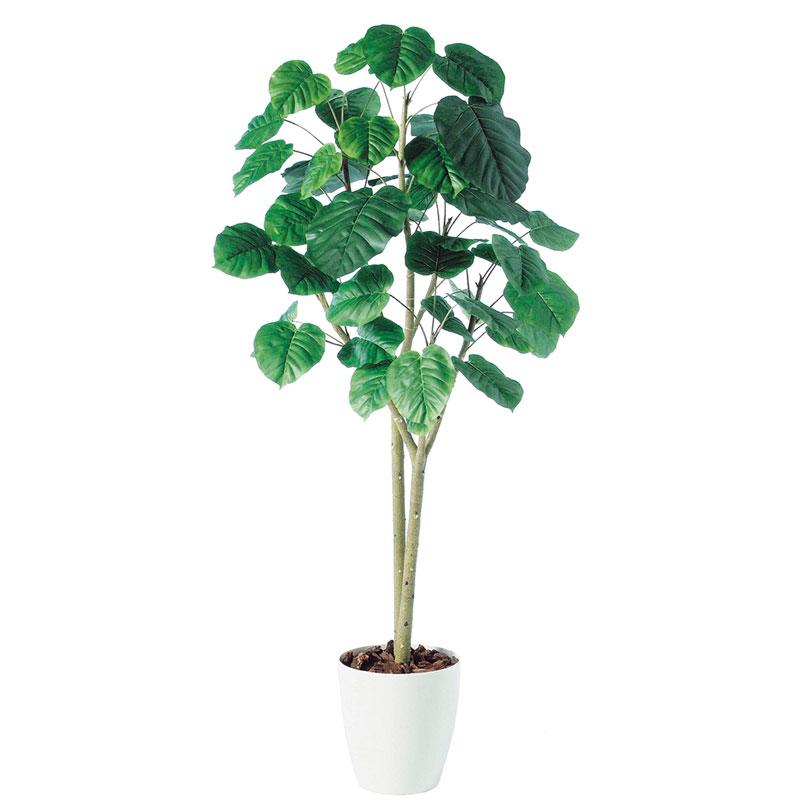 観葉植物 造花 シンボルツリーに最適です すっきりフォルムがスタイリッシュ 即日出荷 公式通販 インテリア 大型 人工観葉植物 消臭 180cm 特定送料 2本立 抗菌 ウンベラータ UDD触媒 フェイクグリーン