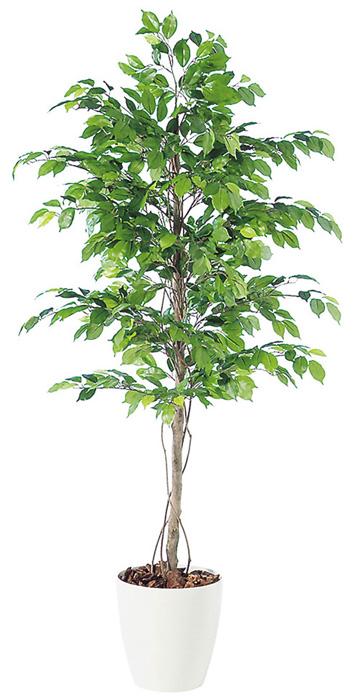 キャッシュレス5%還元対象 観葉植物 造花 大型 人工観葉植物 消臭・抗菌 UDD触媒 フィカスベンジャミナ 200cm・180cm・150cm 送料無料 フェイクグリーン