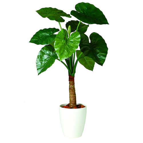 キャッシュレス5%還元対象 観葉植物 インテリア 造花 大型 人工観葉植物 消臭・抗菌 UDD触媒 クワズイモ シングル 100cm 送料無料 フェイクグリーン