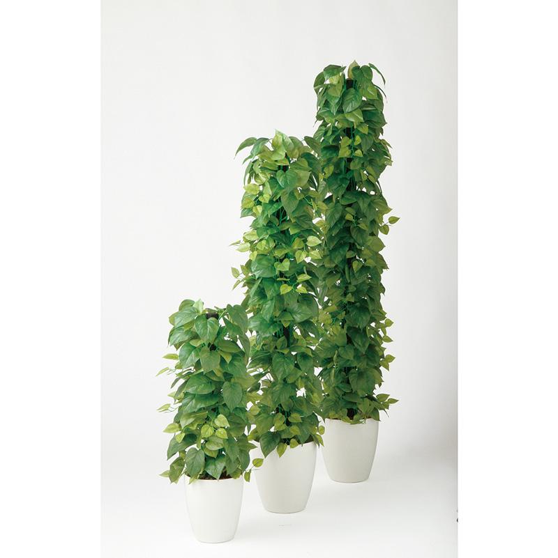 観葉植物 造花 大型 人工観葉植物 消臭・抗菌 UDD触媒 ライムポトスヘゴ GREEN 90cm・150cm・180cm 送料無料 フェイクグリーン
