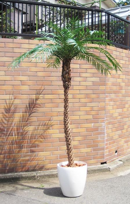 キャッシュレス5%還元対象 観葉植物 造花 大型 人工観葉植物 消臭・抗菌 UDD触媒 フェニックス(天然幹) 200cm 送料無料 フェイクグリーン