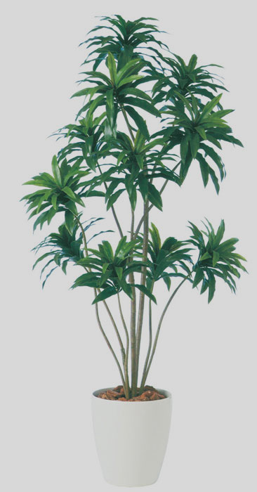キャッシュレス5%還元対象 観葉植物 インテリア 大型 人工観葉植物 消臭・抗菌 UDD触媒 ドラセナ コンパクタ 150cm 送料無料 幸福の木 フェイクグリーン