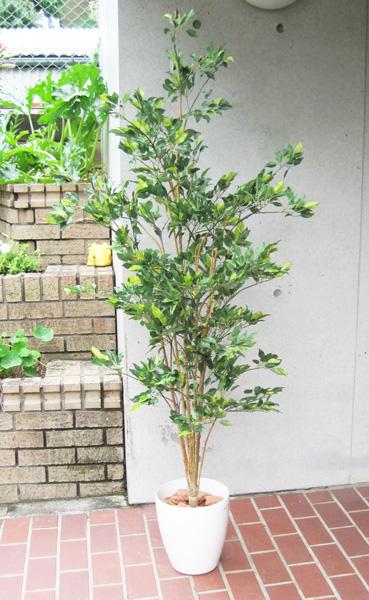 キャッシュレス5%還元対象 観葉植物 大型 造花 リビング 人工観葉植物 消臭・抗菌 UDD触媒 ハワイアンフィカス グリーン 150cm 送料無料 フェイクグリーン