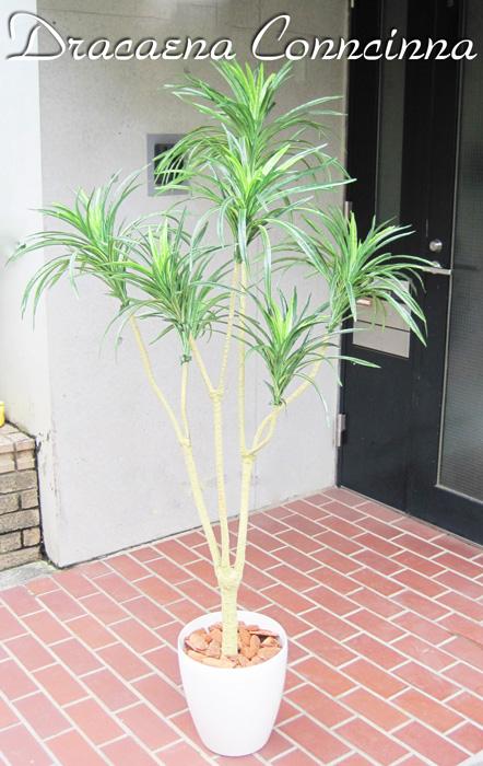 キャッシュレス5%還元対象 観葉植物 造花 リビング 人工観葉植物 消臭・抗菌 UDD触媒 ドラセナコンシンネ グリーン 140cm 送料無料 フェイクグリーン
