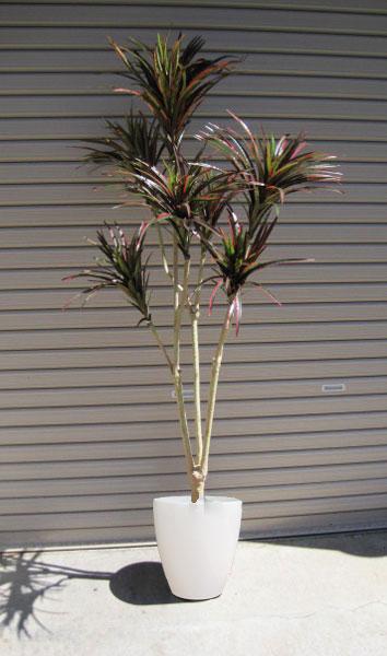 キャッシュレス5%還元対象 観葉植物 造花 リビング 人工観葉植物 消臭・抗菌 UDD触媒 ドラセナコンシンネ グリーンレッド 140cm 送料無料 フェイクグリーン
