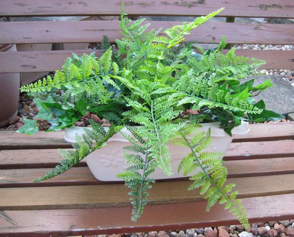 キャッシュレス5%還元対象 観葉植物 造花 大型 人工観葉植物 消臭・抗菌 UDD触媒 寄せ植えプランター ボストンファン 送料無料 フェイクグリーン