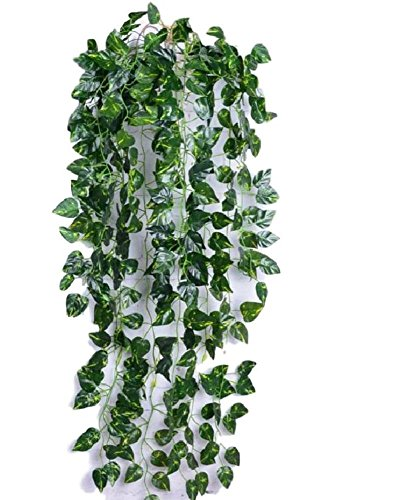 SCGEHA 休日 フェイクグリーン インテリア イミテーション 宅配便送料無料 人工 観葉植物 1本 壁掛け Aタイプ 3種類 癒し 緑