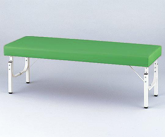 【無料健康相談 対象製品】【ナビス】診察台 ライトグリーン650×1800