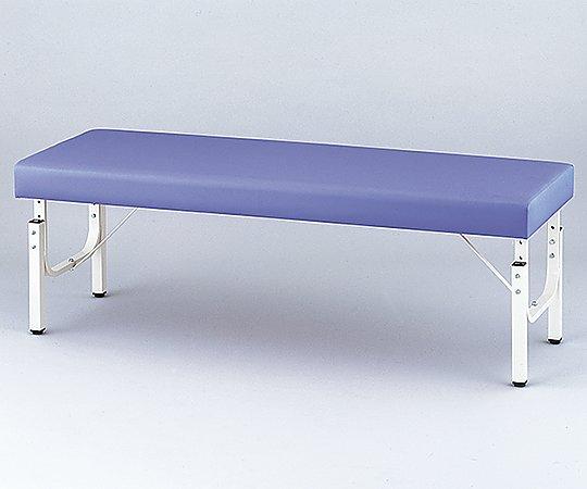【無料健康相談付】【ナビス】診察台 ライトブルー650×1900