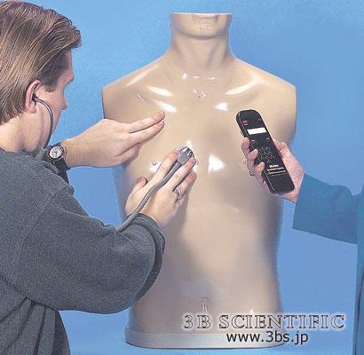 【送料無料】【無料健康相談付】世界基準 3Bサイエンフィティック社聴診トレーニングトルソー&スマートスコープセット