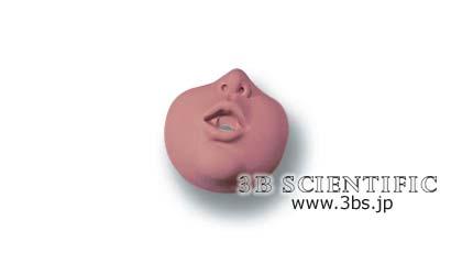 【送料無料】【感謝価格】世界基準 3Bサイエンフィティック社フェイスマスク、10個(W44541用)