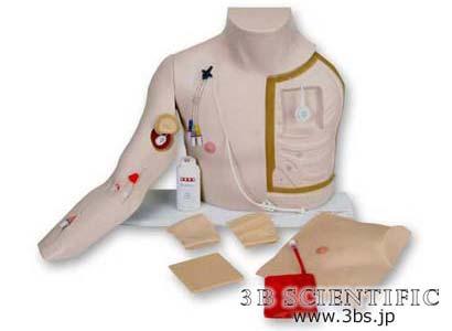 【送料無料】【無料健康相談 対象製品】世界基準 3Bサイエンフィティック社腕部付中心静脈挿管シミュレーター