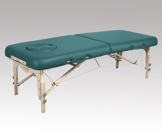 【無料健康相談 対象製品】【ナビス】折りたたみベッド NPS28T ティール