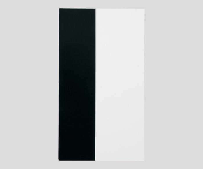 隠ぺい率試験紙タテ白黒Aタイプ