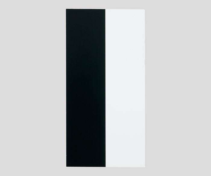 隠ぺい率試験紙HP板(タテ白黒)