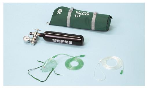 【送料無料】【無料健康相談 対象製品】携帯用酸素吸入器(スタンダードタイプ)  30分用 OX-100S