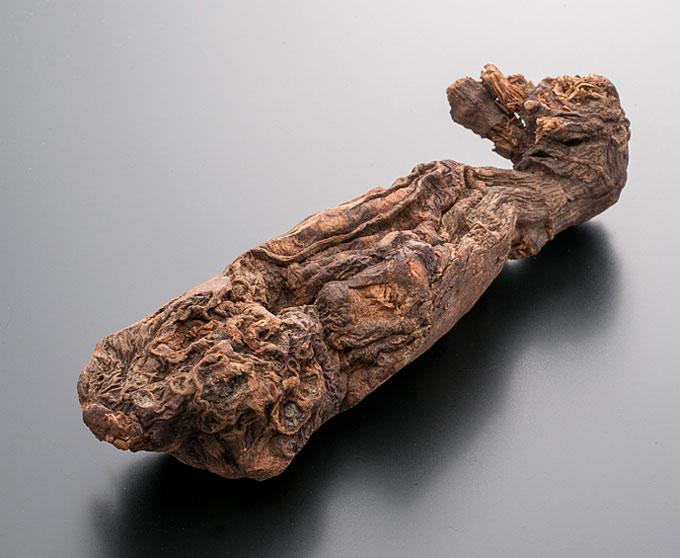 【10%割引クーポン配布中】インドネシア産  沈香 原木 (じんこう)