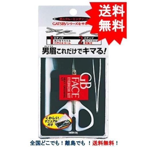 1000円ぽっきり 送料込み GATSBY GB ギャツビー 国際ブランド 送料無料 フェイス お値打ち価格で メンズ アイブローキット