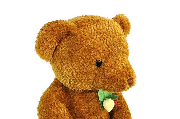 【N151】ぬいぐるみワイルドストロベリーベア— ブラウンLL 大きなサイズで抱き心地も満点です!【秀光】