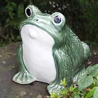 信楽焼 和風 おしゃれ  カエル君 緑色 縁起物 カエル お庭 玄関 陶器 蛙 かえる  幸せ 子宝 健康 ka-0064