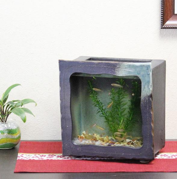 信楽焼 和風 おしゃれ 水槽 陶器水槽 陶器とガラスがコラボ インテリア水槽 金魚鉢 メダカ鉢 陶器 水鉢 めだか鉢 金魚鉢 鉢 はす鉢 睡蓮鉢 su-0124