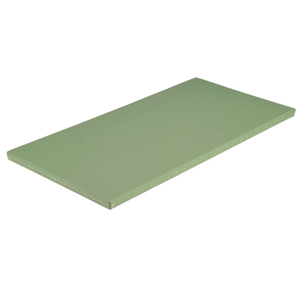 エバニュー 柔道用畳ソフト すべり止め付 関東間 わさびグリーン EVERNEW EKR0051 527