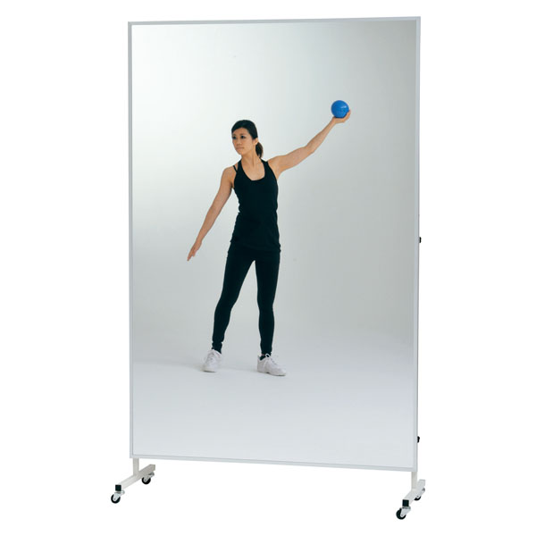 トーエイライト 移動式フィルムミラー900 TOEILIGHT T2831 体育器具、用品 その他体育器具
