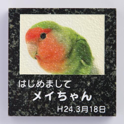ペットオブジェ 蛇紋ミカゲ 180角 スタンドオプション有り(別売)