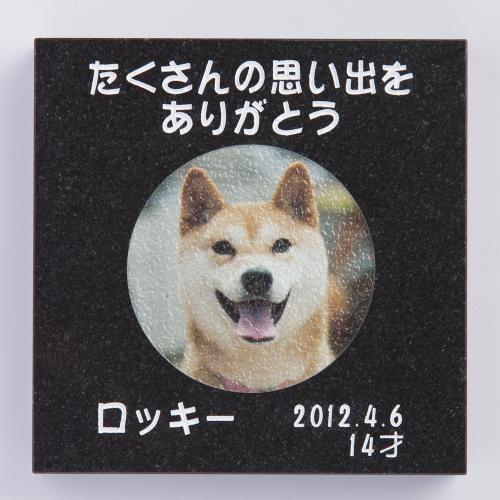 ペットオブジェ 黒ミカゲ 150角 スタンドオプション有り(別売)