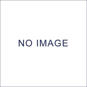 キャスター付台輪(W150用) (W55130) (店舗什器・店舗備品/屋台風販売台・ディスプレイ什器)