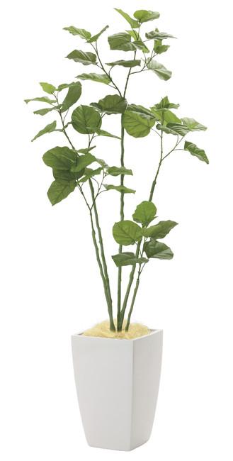 【2019年新商品】【送料無料】アーバンブランチウンベラータ1.8 (造花) 高さ180cm 光触媒 (943A650)(店舗用品/光触媒 人工観葉植物・造花・フェイクグリーン/フロア(鉢型)用/165cm以上)