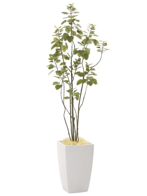 【2019年新商品】【送料無料】アーバンブランチツリー1.8 (造花) 高さ180cm 光触媒 (944A450)(店舗用品/光触媒 人工観葉植物・造花・フェイクグリーン/フロア(鉢型)用/165cm以上)