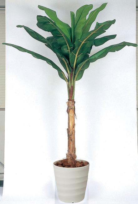 【送料無料】バナナ (人工観葉植物) 高さ200cm 光触媒 (135B500)(店舗用品/光触媒 人工観葉植物・造花・フェイクグリーン/フロア(鉢型)用/165cm以上)