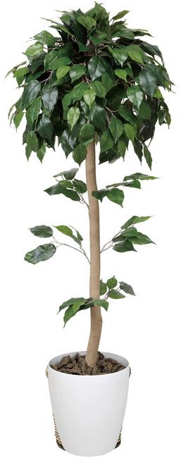 【送料無料】ベンジャミントピアリー (人工観葉植物) 高さ150cm 光触媒 (373B240)(店舗用品/光触媒 人工観葉植物・造花・フェイクグリーン/フロア(鉢型)用/125~160cm)