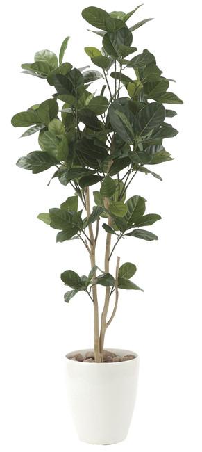 【送料無料】パンの木 (人工観葉植物) 高さ125cm 光触媒 (611E200)(店舗用品/光触媒 人工観葉植物・造花・フェイクグリーン/フロア(鉢型)用/125~160cm)