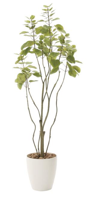 【送料無料】フィカスブランチツリー (人工観葉植物) 高さ130cm 光触媒 (723A180)(店舗用品/光触媒 人工観葉植物・造花・フェイクグリーン/フロア(鉢型)用/125~160cm)