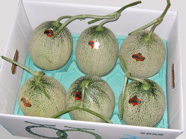 北海道夕張産 夕張メロン(共撰・優) 1.3kg×6玉送料無料 冷蔵配送出荷期間 6月下旬~8月上旬